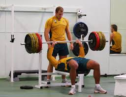 squat bend push pull twist and single leg