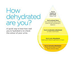 Body Hydration Level Chart Dehydrated Hydration Image Showing Hydration Level By Urine