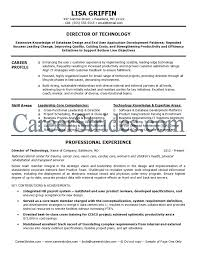 It Director Resume Resume Templates