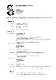 cv formats pdf