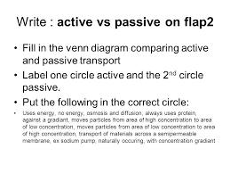 Venn Diagram For Osmosis And Diffusion Active And Passive Transport Venn Diagram Usa Test Prep Write Vs On