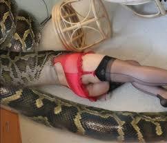 Free fetish snake sex