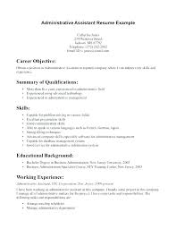Student Resume Examples No Experience Download By Work Example Sales