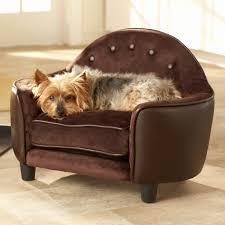 designer dog bed furniture. Beautiful Bed Dog Beds Designer Elegant Fancy New Bed Furniture  On O