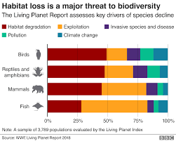 Natures Emergency Where We Are In Five Graphics Bbc News