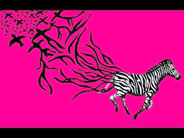 Pink Zebra Print Wallpaper For Bedroom Zebra Pink Wallpaper