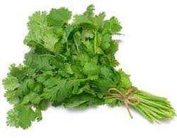 Green Leaf Vegetables Suppliers In India Al Noorani Exports