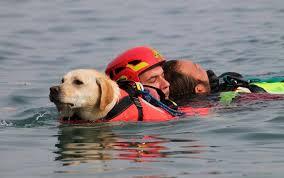 Gorgona, cani-salvataggio al fianco dei detenuti | Agenziaimpress.it