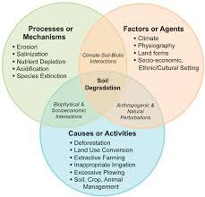 mitigate soil degradation