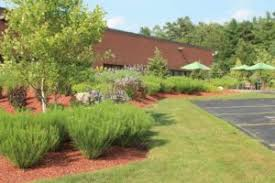 office landscaping. brookwood business center in massachusetts office landscaping