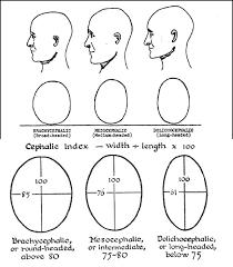 Field Basics In Craniometry