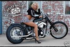 big dog motorcycle banner ebay