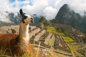 Resultado de imagem para fotos de uma das maiores reservas naturais no Peru