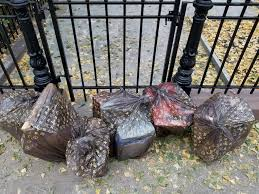 I saw the Louis Vuitton garbage bags placed in front of Paul manafort  Brooklyn Brownstone. I thought you guys might enjoy it.