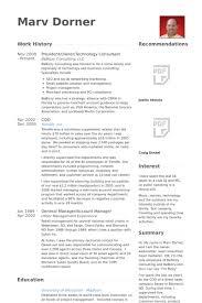 Technology Consultant Resume Samples Visualcv Resume Samples Database