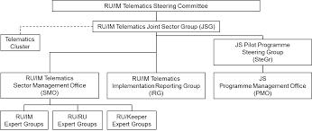 Organisational Structure Ru Im Telematics Joint Sector
