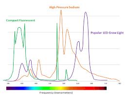 Why Full Spectrum Light Tall Trees Led Company
