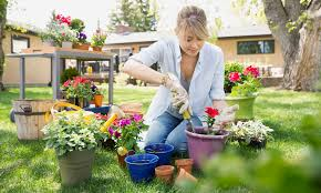 clean out your garden spring is here and it s time to clean your garden and remove all remnants of winter start by removing weeds
