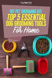 Best Diy Tools Top 5 Best Grooming Tools For Dogs 2016 Diy Dog Grooming Kit
