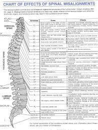 Chiropractic Body Chart Spinenerve Anderson Chiropractic