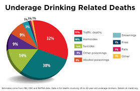 - Drinking Tennessee Office State Underage Madd In Tn Prevention