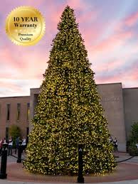 Giant Sequoia Commercial Christmas Tree