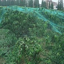 bird netting for garden. Beautiful Garden 2Pack 4x10M AntiBird Netting PE Meshy Fruit Tree Vegetable Plant Bird Inside Netting For Garden T