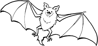 Small Picture Bat Colouring Pages Fun for Halloween
