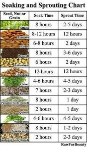 Sprouting Seeds Soaking And Sprouting Chart Vegetable