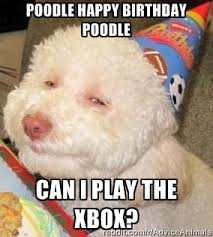 poodle happy birthday poodle can i play the xbox? - Troll dog ... via Relatably.com