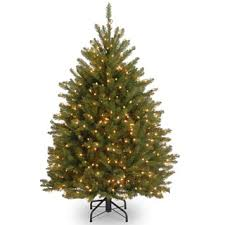 38 Black Christmas Tree Decorations Ideas  Black Christmas Trees Black Fiber Optic Christmas Tree