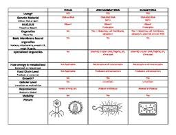 Kingdoms Of Biology Chart Taxonomy 6 Kingdom Classification Chart Prokaryotes Eukaryotes And Viruses