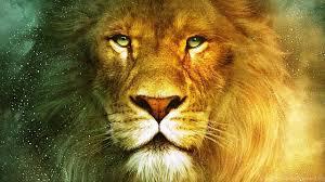 lion wallpaper hd widescreen. Exellent Widescreen Netbook  For Lion Wallpaper Hd Widescreen 7