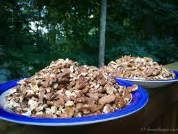 harvesting black walnuts. Simple Harvesting Black Walnuts 1 Throughout Harvesting