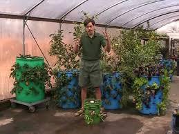 barrel garden. 3-D Vertical Barrel Gardening - A Striking Use For Used Barrels Garden