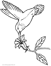 Small Picture Bird Coloring pages coloring page hummingbird Patterns Art