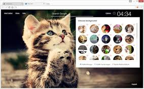 cute cats and kittens wallpapers. Plain Kittens Intended Cute Cats And Kittens Wallpapers