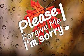 40 i m sorry messages for boyfriend