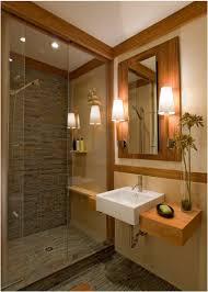 transitional bathroom ideas. Transitional Bathroom Ideas Agvehsst