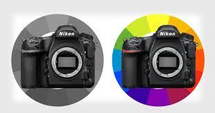 Nikon Digital Camera Comparison Chart Nikon D850m Vs D850 A Comparison Of Monochrome And Color Dslrs
