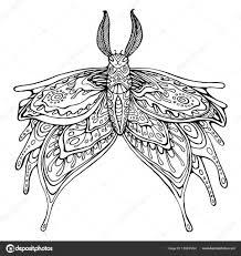 Vlinder Kleurplaat Pagina Voor Kinderen En Volwassenen Stockvector