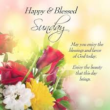 Blessed Sunday Quotes Custom Happy And Blessed Sunday Pictures Photos And Images For Facebook