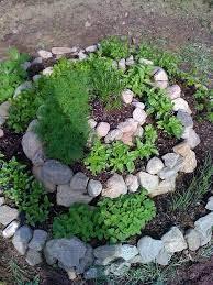herb spiral spiral garden plants