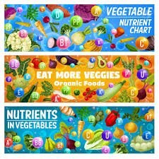 Vegetables Nutrient Chart And Organic Food Health Benefits Vector