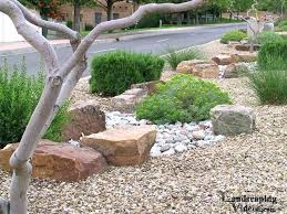 Large decorative rocks Pebbles Decorative Rocks For Garden Large Decorative Rocks Low Water Use Planting Display In New With Large Kwnyinfo Decorative Rocks For Garden Large Decorative Rocks Low Water Use
