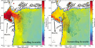 Remote Sensing Of Coastal And Ocean Currents An Overview