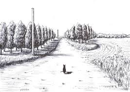 原画ボールペン画風景猫yonoka