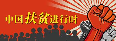 Image result for 中国扶贫