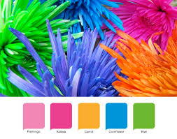 Awesome What Are Tropical Colors Ideas - Best idea home design .