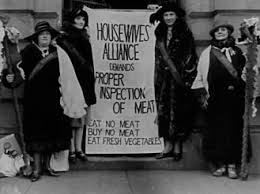best progressive era images conspiracy theories housewives demand meat be inspected progressive era response to the jungle result